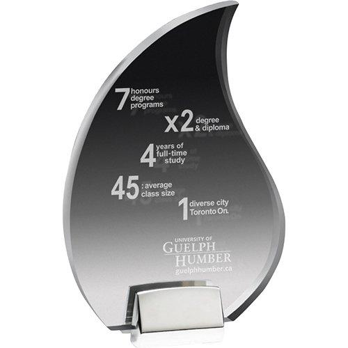 Clear Acrylic Awards with Chrome Base | Jobox Media
